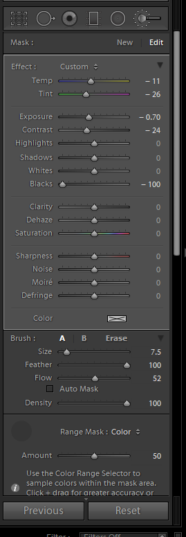 Lightroom Adjustments Panel