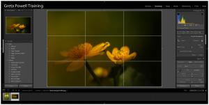 Adobe Lightroom Crop Tool